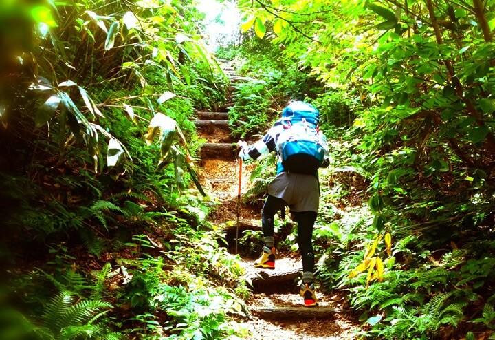 鳳凰三山における登山ツアーの魅力