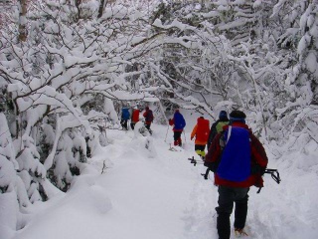 八ヶ岳・夏沢鉱泉~箕冠山スノーシューハイク2日間