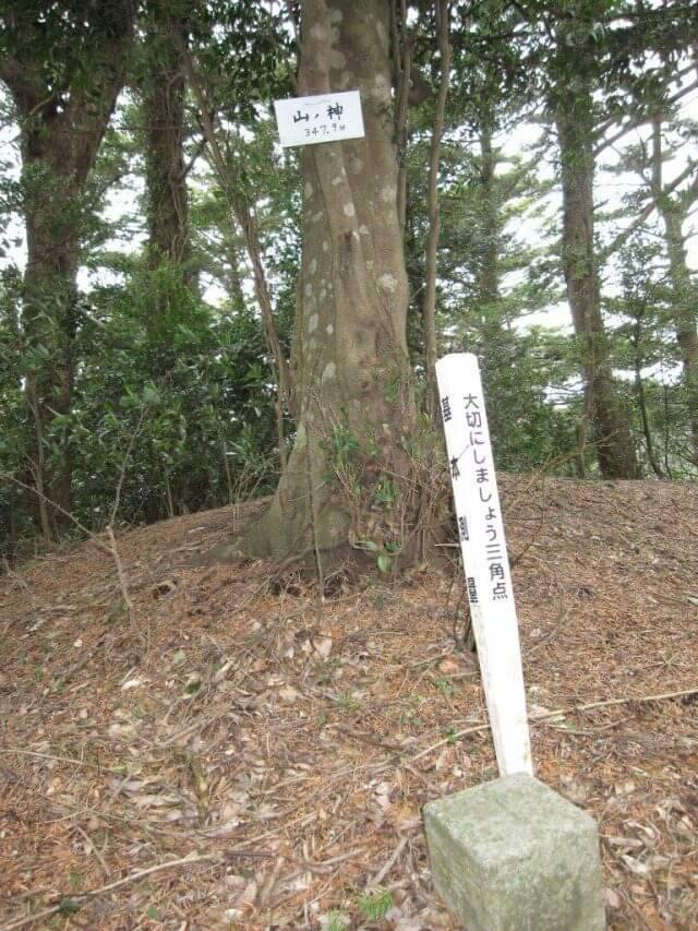 花立峠~宇藤木山ノ神 - (関東関東|登山ツアー・ハイキングツアー・トレッキングツアー・ネイチャーツアーのことならアルプスエンタープライズ